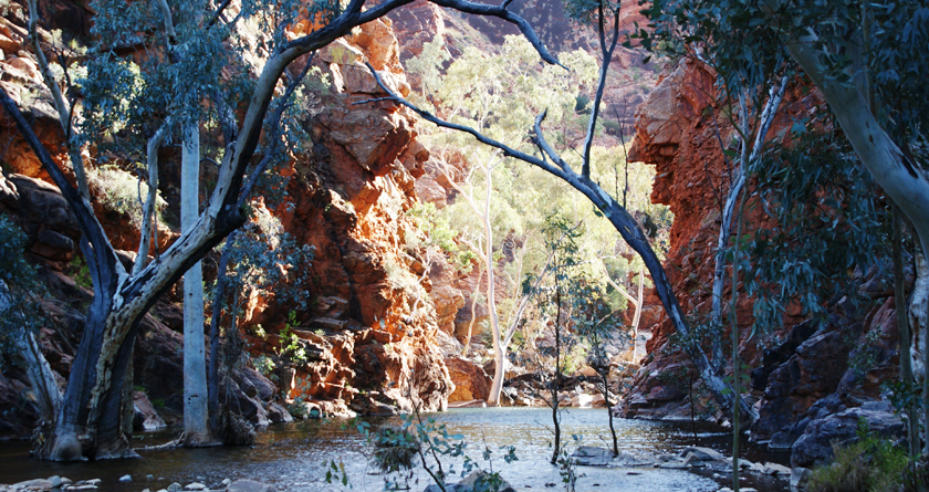 Serpentine Gorge, Larapinta Trail