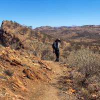 Hiking along the Larapinta Trail in the Northern Territory | #cathyfinchphotography