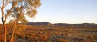 View of our private camp on the Larapinta | Andrew Bain