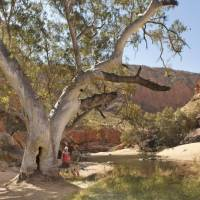 Classic outback country in Australia's Northern Territory   Paddy Pallin