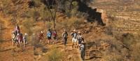 Traversing the ridgelines on the Larapinta Trail   Peter Walton