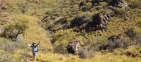 Outback scenery on the Larapinta Trail | Latonia Crockett