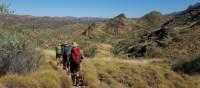 Vibrant landscapes trekking the Larapinta Trail   Linda Murden