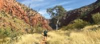 Walking towards Ormiston Gorge | Ayla Rowe