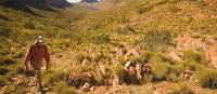 Walking the Larapinta Trek | Aran Price