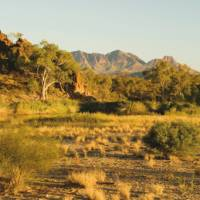 The summit of Mount Sonder drews us on to the end of the Larapinta Trail   Aran Price