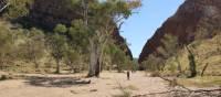 Trekkers make their way towards Simpson's Gap on the Larapinta Trail | Larissa Duncombe