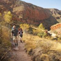 The Larapinta trail, known as one of Australia's best hikes   Paddy Pallin